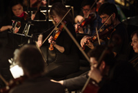 Photo of orchestra members with their instruments in the orchestra pit